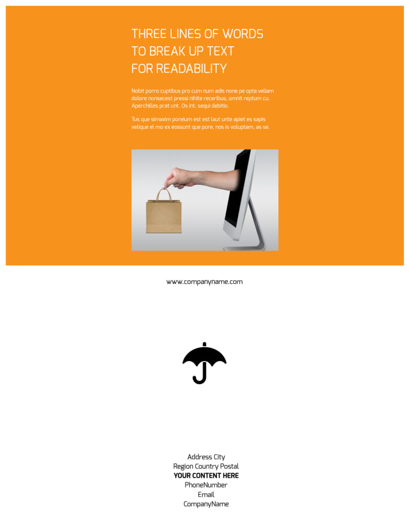 Ecommerce Business Consulting Flyer Template Preview 3