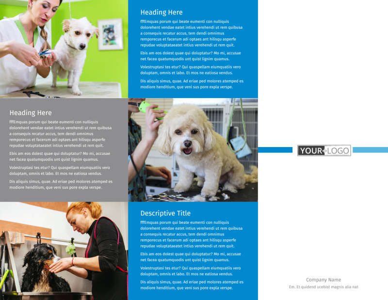 Clean Care Pet Grooming Brochure Template Preview 2