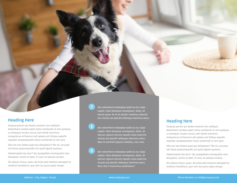 Clean Care Pet Grooming Brochure Template Preview 3