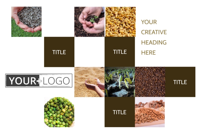 Seed Technology Postcard Template Preview 2