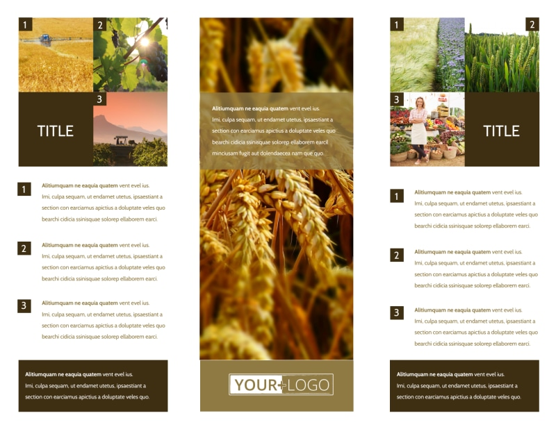 Seed Technology Brochure Template Preview 3