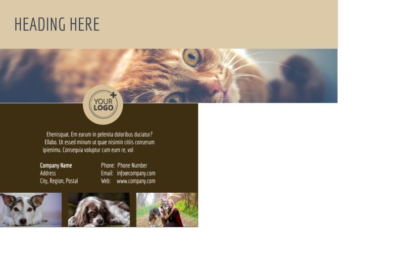 Pet Rescue Postcard Template Preview 3
