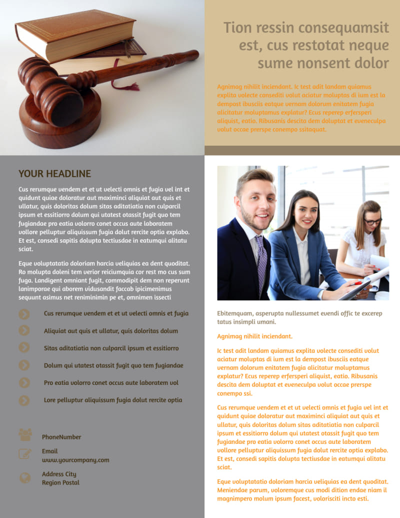 Criminal Law Defense Flyer Template Preview 3