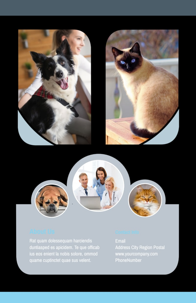 Veterinary Clinic Flyer Template Preview 3