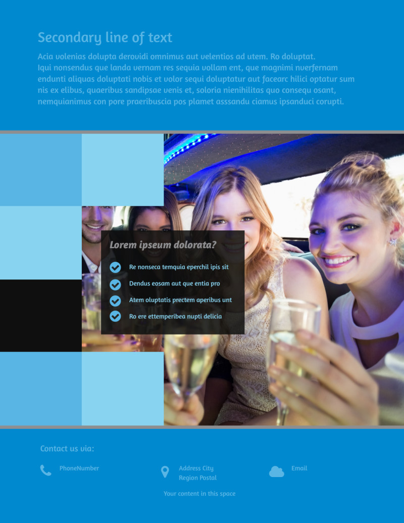 Party Bus Flyer Template Preview 3
