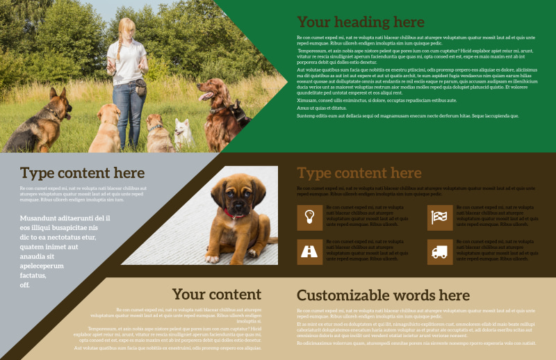 Pet Kennels Brochure Template Preview 3