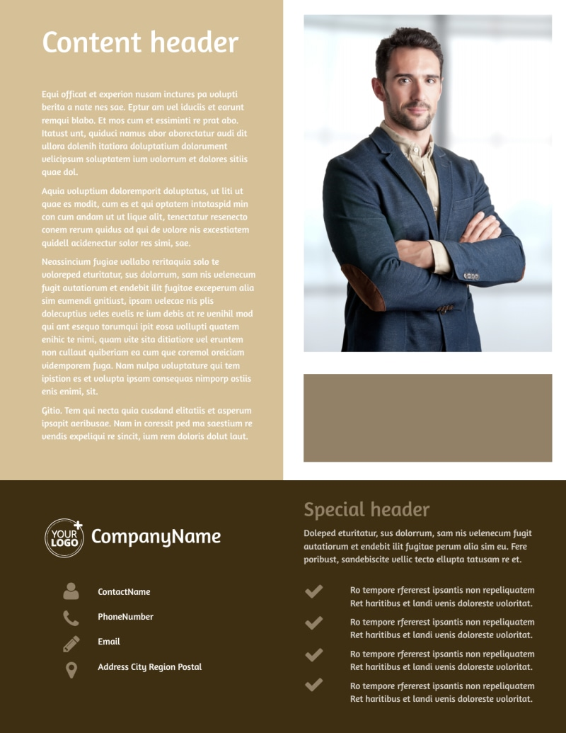 Lawyer Law firm Flyer Template Preview 3
