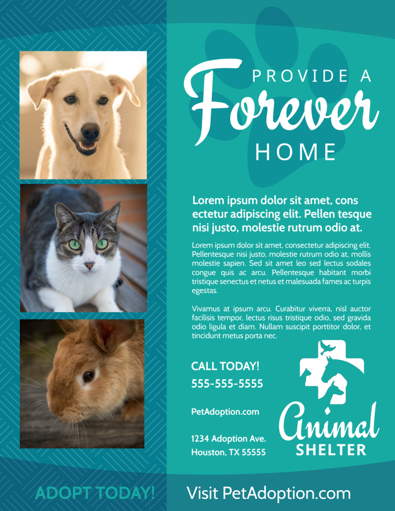 Animal Shelter & Pet Adoption Flyer Template Preview 2