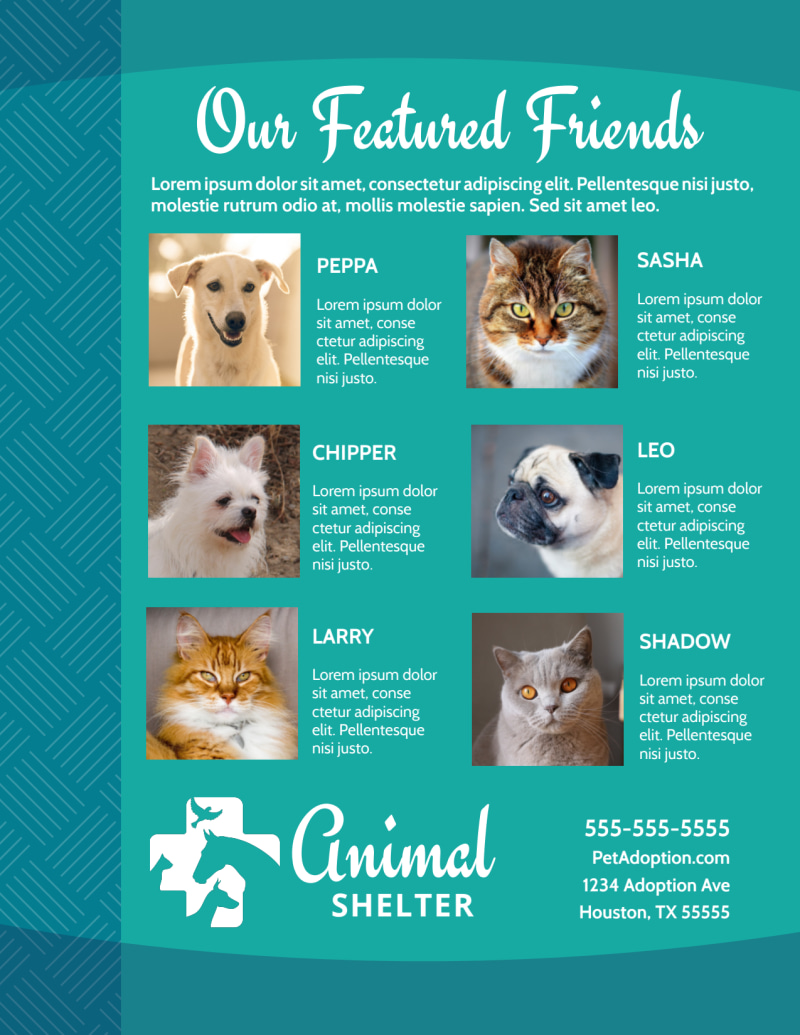 Animal Shelter & Pet Adoption Flyer Template Preview 3