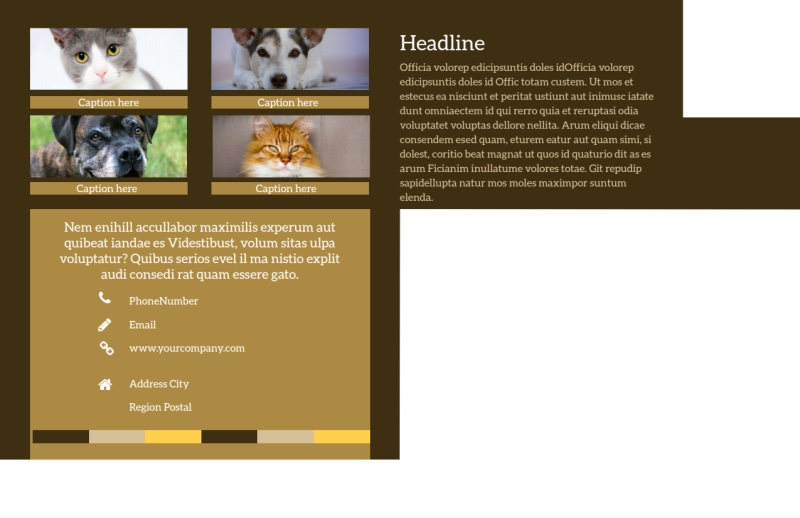 Animal Shelter & Pet Adoption Postcard Template Preview 3