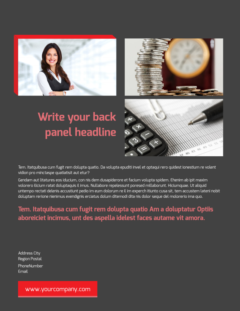Accounting & Bookkeeping Firm Flyer Template Preview 3