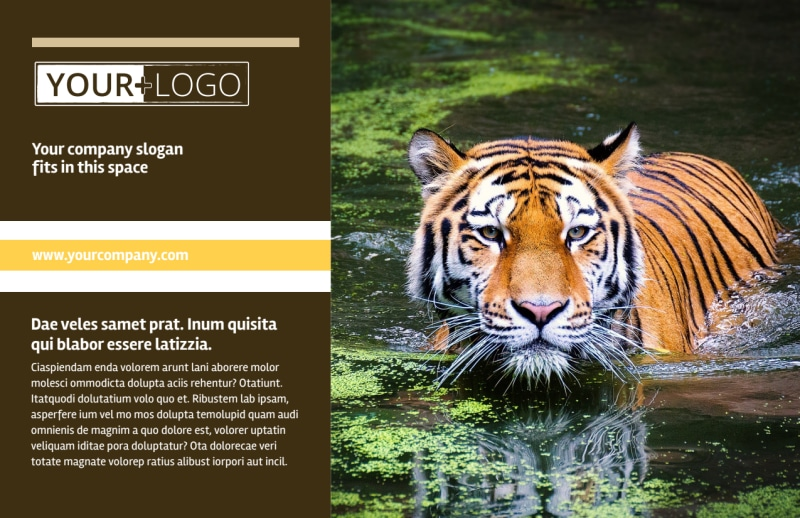 Zoo & Wild Animal Park Postcard Template Preview 2