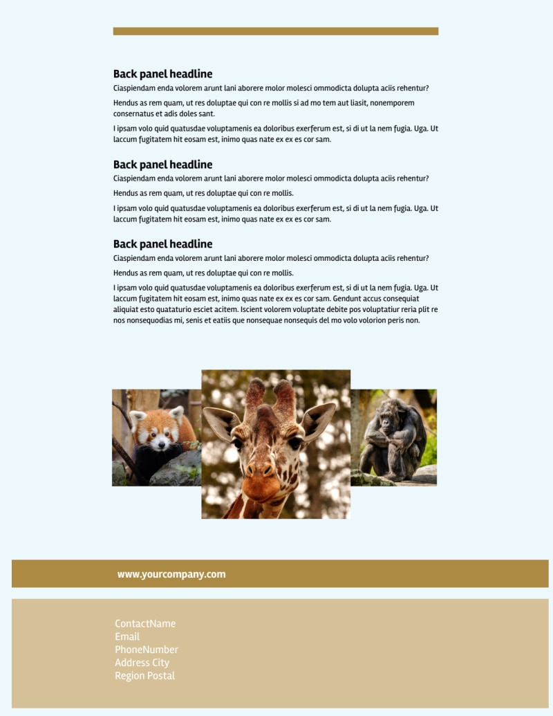 Zoo & Wild Animal Park Flyer Template Preview 3