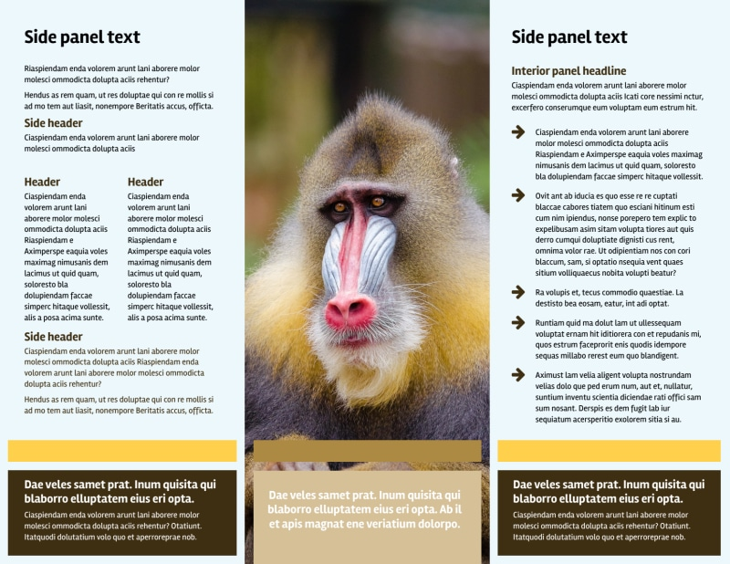 Zoo & Wild Animal Park Brochure Template Preview 3