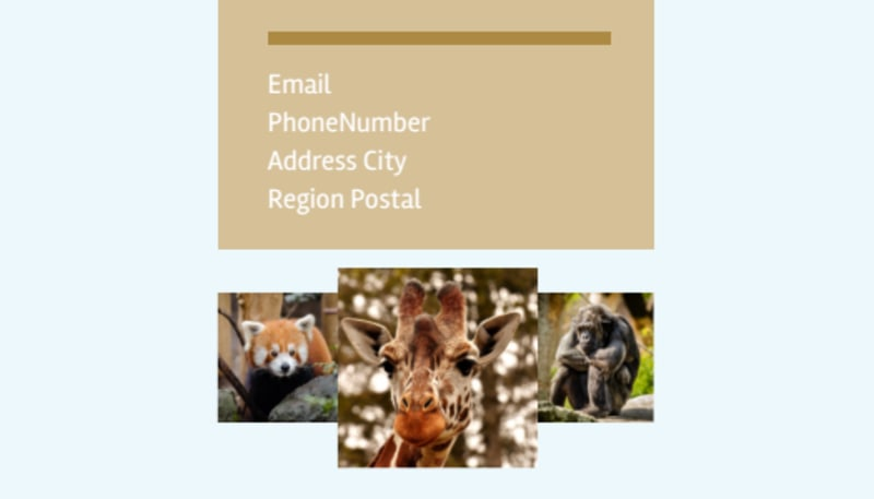 Zoo & Wild Animal Park Business Card Template Preview 3