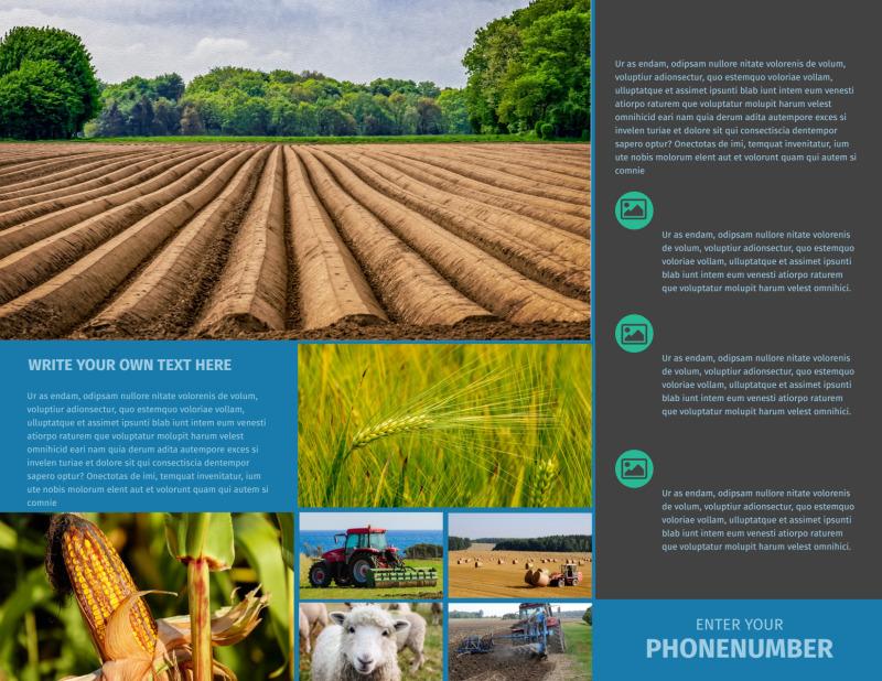 Farm Management Brochure Template Preview 3