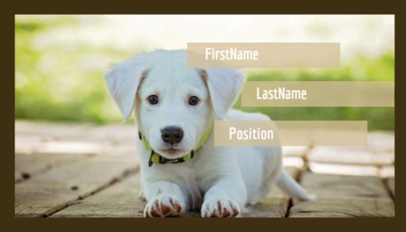 Pet Store Business Card Template Preview 2