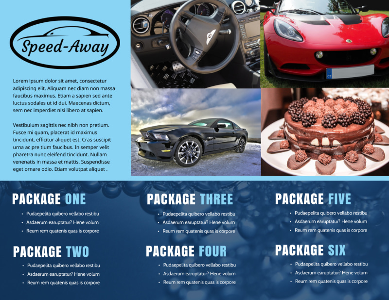 Auto Detailing Brochure Template Preview 3