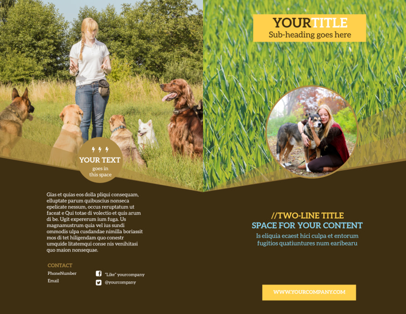 Obedience Classes Brochure Template Preview 2