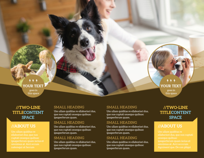 Obedience Classes Brochure Template Preview 3