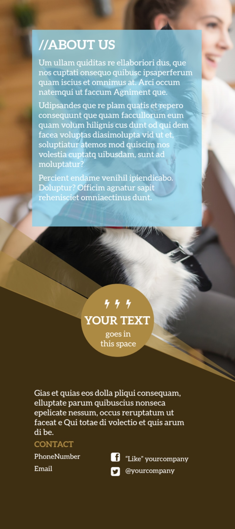 Obedience Classes Flyer Template Preview 3