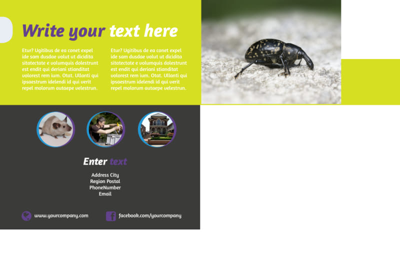 Pest Control Postcard Template Preview 3