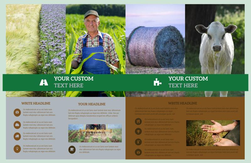Farm Consultants Brochure Template Preview 3